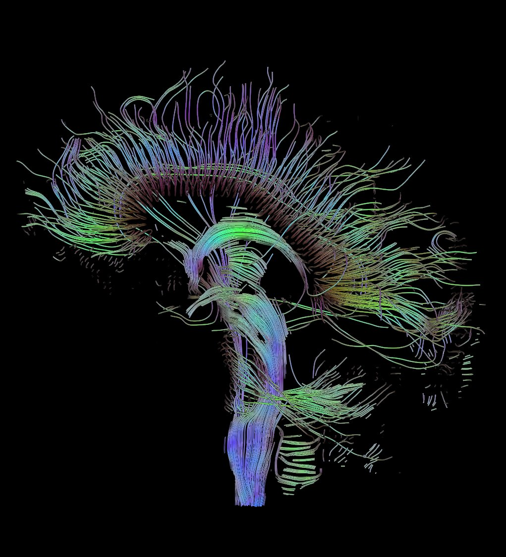 neuroscience research paper
